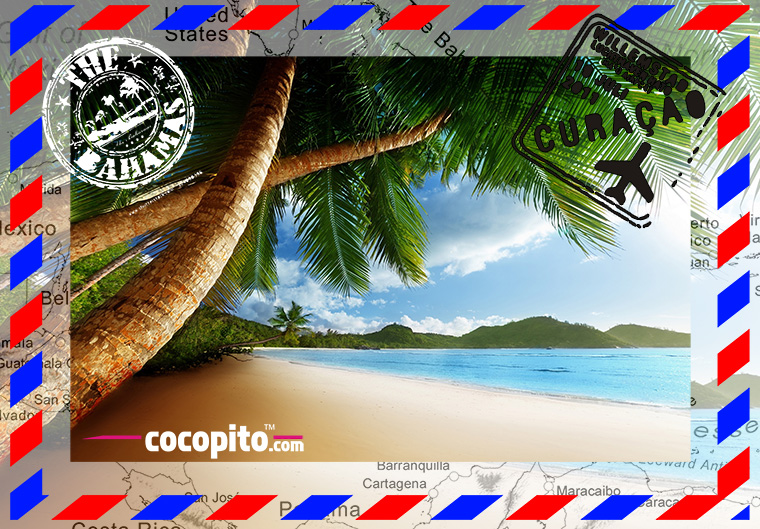 cocopito summer tshirts on the beach wear revolution made in POLAND EU