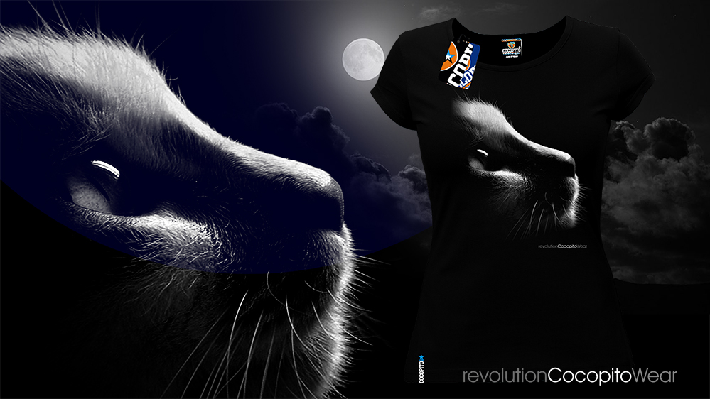 Catshirt Black&White